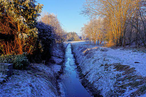 Canal, Snow, Woods, Trees, Bare Trees, Snowy, Wintry