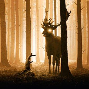 Deer, Forest, Momentum, Mystery, Stonehenge, Wiltshire