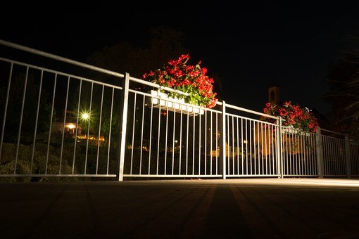 Flowers, Night Photograph, Railing, Night, Away
