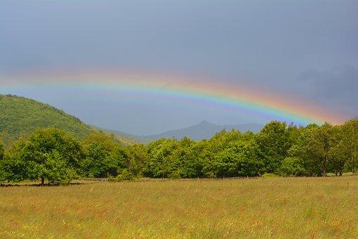Rainbow, Multicolor, Rain, Sun, Prairie