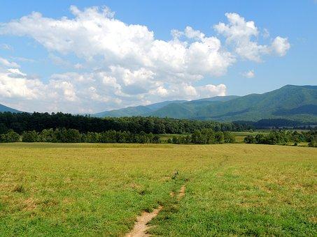 Path, Way, Mountain, Blue Sky, Travel, Journey, Pathway