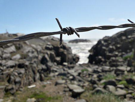 Barbed Wire, Fence, Sharp, Knot, Barb Wire, Wire, Coast