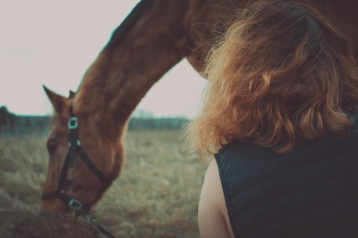 Horse, Animals, Nature, Pasture, Dream, Beauty, Magic