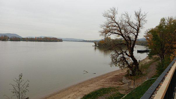 In Zebegény, The Danube Bend, Hungary, Wood, Brown