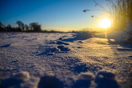 Snow, Sunlight, Winter, Field, Snow Field, Hoarfrost