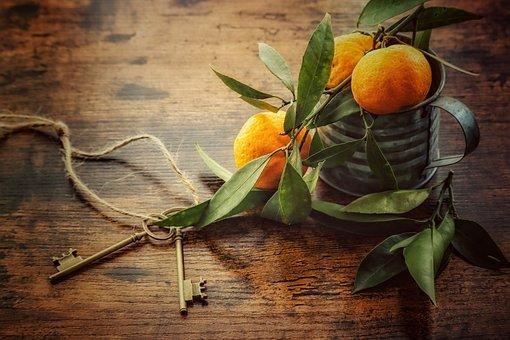 Harvest, Orange, Oranges, Citrus, Nature, Genuine, Home
