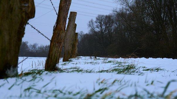 Fence, Wire, Freeze, Farm, Snow, Weather, Landscape