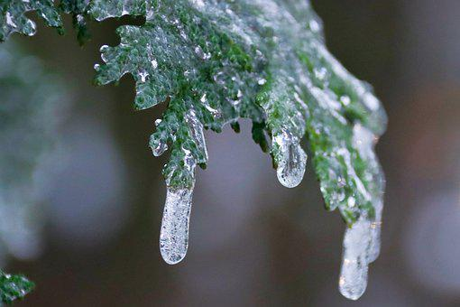 Ice, Icicle, Winter, Frozen, Cold, Frost, Icy, Nature