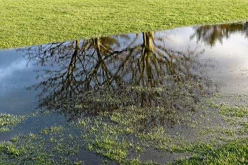 Golf, Golf Course Flooding, Water, Reflection, Course