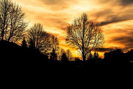 Sunrise, Hope, Brightness, Landscape, Scenery, Joy