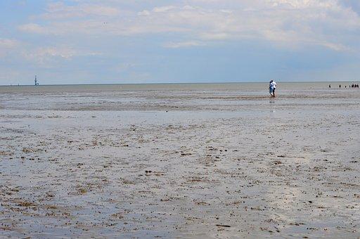 Watts, North Sea, Ebb, Mudflat Hiking, Tides