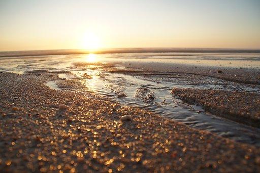 Le Pin Sec, Biscarrosse, Atlantic, Dune, Ocean, Sea