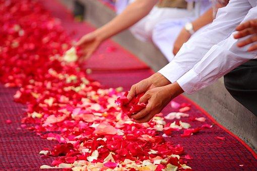 Rose Petals, Buddhism, People, Thailand, Floor