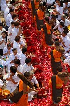 Buddhists, Monks, Buddhism, Walk, Orange, Robes, Thai