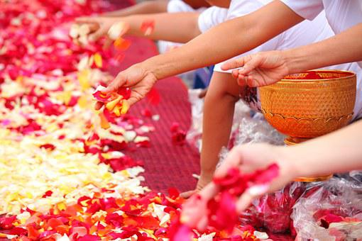 Buddhists, Rose Petals, People, Thailand, Ceremony