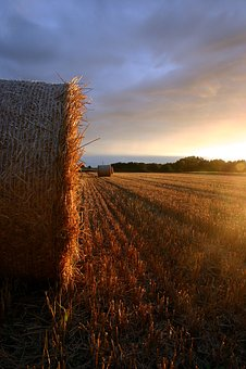 Summer, Straw, Field, Sunset, Landscape, Autumn, Farm