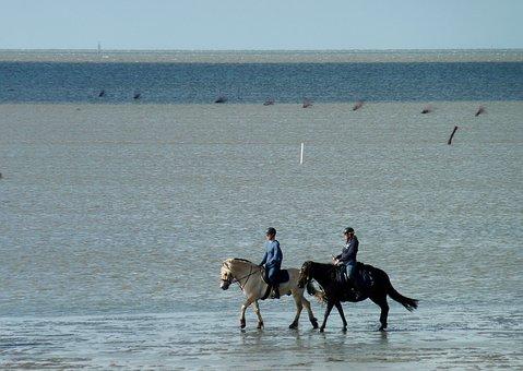 Watts, Ride, Rode In Watt, Ebb, Flood, Tides, Water