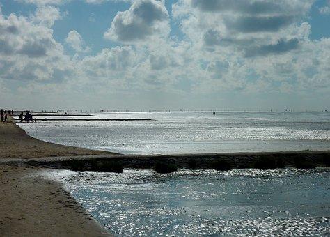 Watts, Watt Hike, Ebb, Flood, Water, Wadden Sea