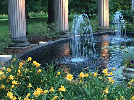 Fountain, Lilies, Architecture