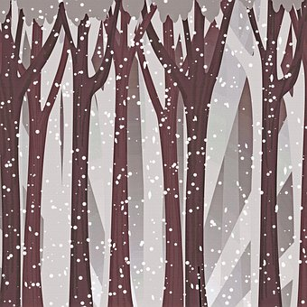 Digital Paper, Forest, Snowfall, Trees, Woods