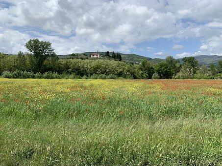 Tuscany, Italy, Rufina, Campaign