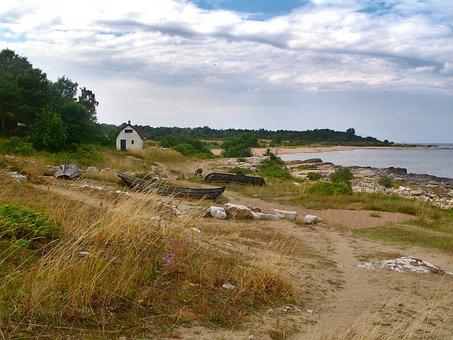 Beach, Shore, Sea, Clouds, Sky, Grass, Beach Grass