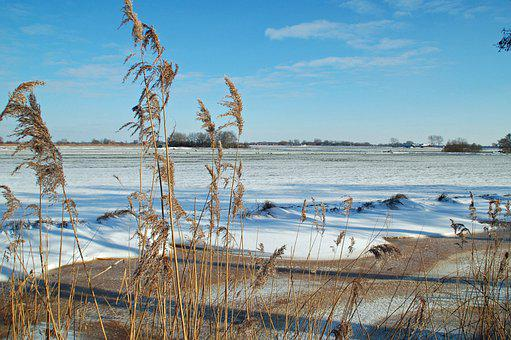 Winter, Wide, Meadow, Landscape, Cold, Snow, Nature