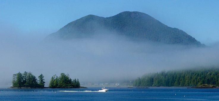 Tofino, Fog, Harbor, Mountain, Canada, Ocean, Boats