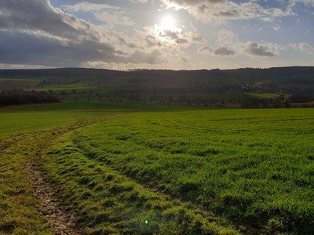 Away, Nature, Hope, Landscape, Road, Meadow, Light