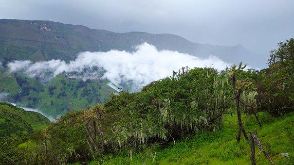 Naturaleza, Montaña, Invierno