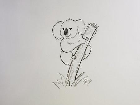 Koala, Drawing, Koala Bear, Sketch, Cartoon, Australia