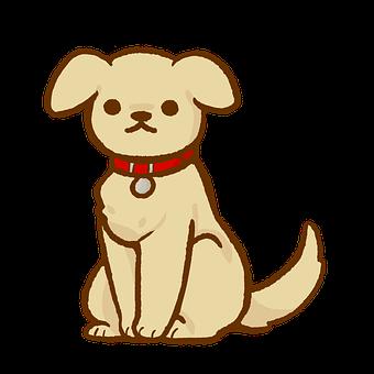 Dog, Puppy, Retriever, Pet, Animal, Cute, Canine