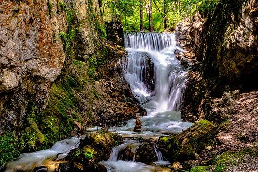Waterfalls, Forest, Rocks, Moss, Water, Flow