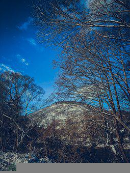 Nature, Snow, Winter, Tree, Mountains, Trees, Frost