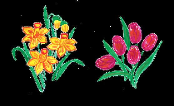 Spring, Spring Flower, Easter, Daffodil, Tulip, Nature
