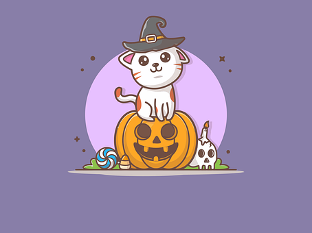 Cat, Pumpkin, Halloween, Kitten, Jack-o'-lantern