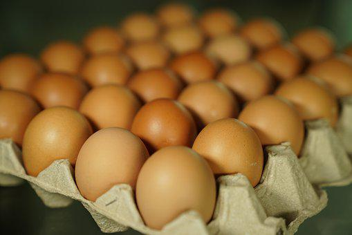 Eggs, Egg Shells, Tray, Food, Catering, Ingredients