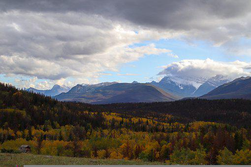 Canada, Alberta, Jasper, National Park, Nature