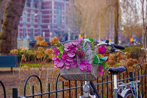 Bicycle, Flowers, City, Amsterdam