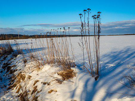 Czech Republic, Landscape, Afternoon, Snow, Field