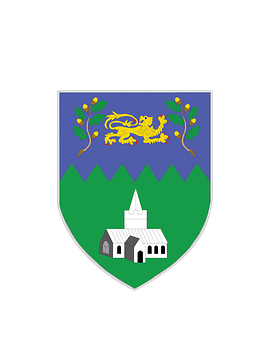 Coat, Arms, Wicklow, County, Ireland, Eire, Irish