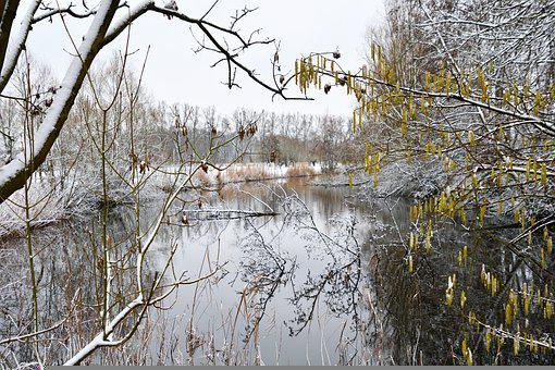 Landscape, Winter Landscape, Nature, Pond, View