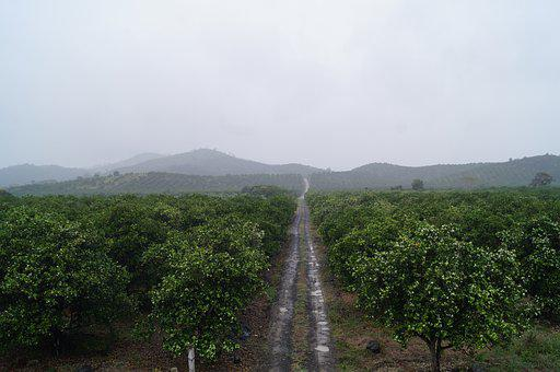 Landscape, Paisaje, Nature, Green, Verde, Natural