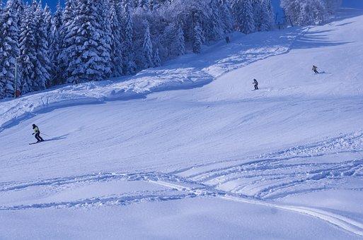Ski-sport, Winter, Landscape, Ski, Outdoor, Motivation
