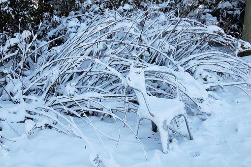 Garden, Snow, White, Bush, Shrubs, Winter, Landscape