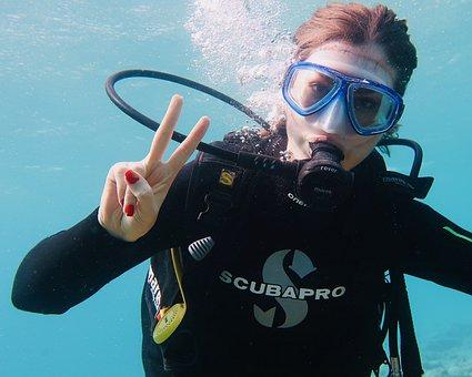 Scuba, Diving, Underwater, Diver, Sea, Ocean, Fish