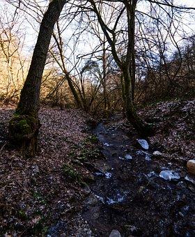 Bach, Creek, Water, Nature, Landscape, Rock, Stones
