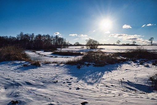 Winter, Wintry, Snow Landscape, Field, Scenic, Blue Sky