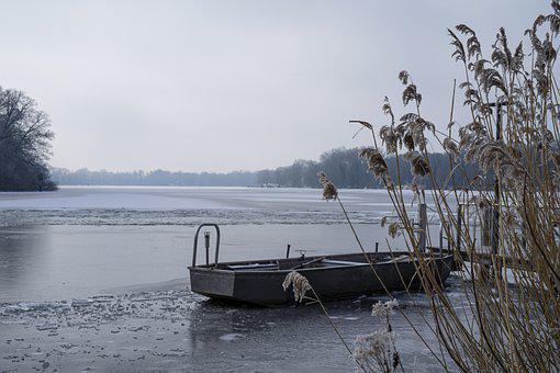 Ice, Reed, Frost, Boat, Lake