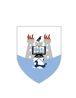 Dublin, County, Coat Of Arms, Irish, Ireland, Leinster